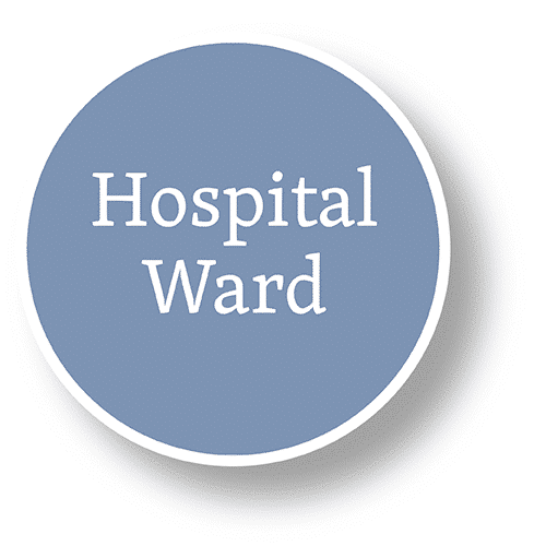 hospital ward bubble graphic