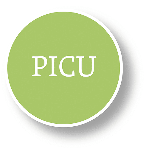 picu bubble graphic